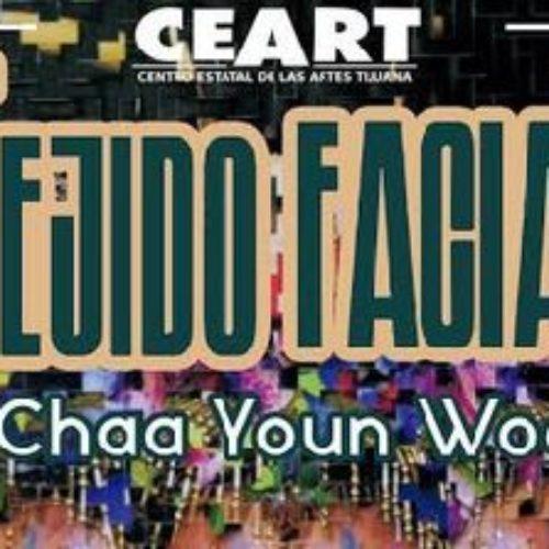 Exhibirán al artista coreano Chaa Youn Woo en Ceart Tijuana