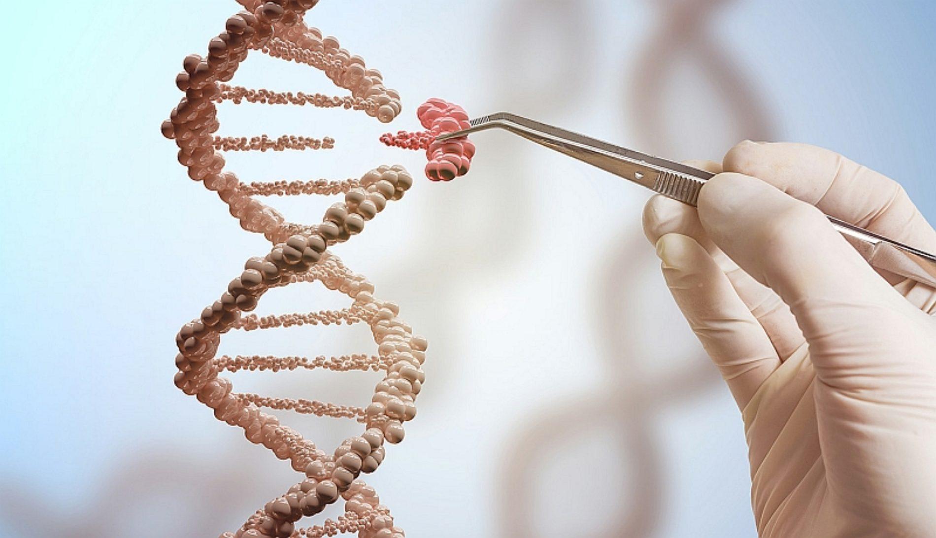 Científicos eliminan por completo el VIH en animales