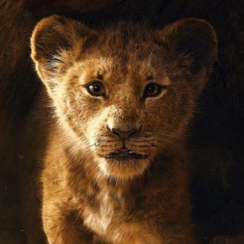 Tráiler del remake en imagen real de El rey león